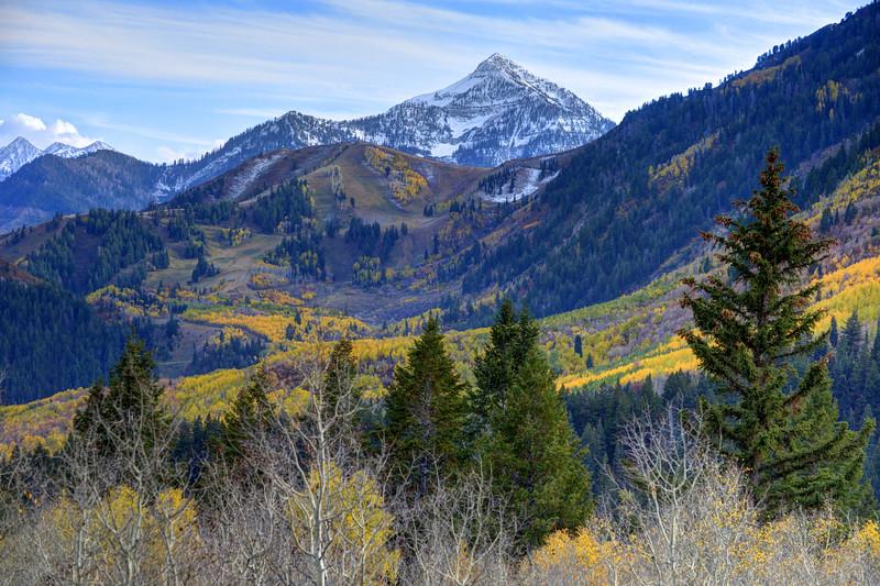 SALT GRASS COMMUNITY – Salt Lake City, Utah